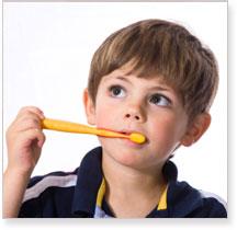 Dental Insurance Options